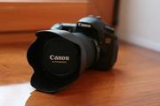 Canon 60d с объективом  EF 17-55 мм.